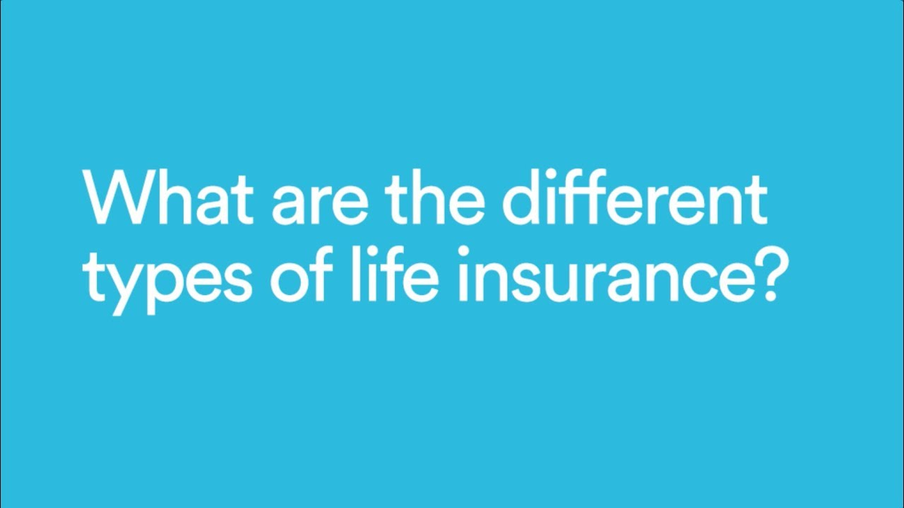 State Farm Life Insurance Review And Quotes Termlife2go >> Different Types Of Life Insurance Coverage Explained Haven Life