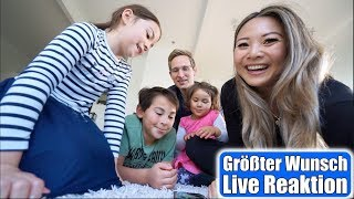 Live Reaktion der Kinder 😍 Größter Wunsch geht in Erfüllung! Wir bekommen 2 Katzen | Mamiseelen