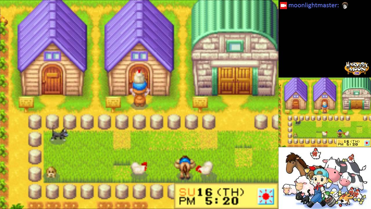 Harvest moon ds house upgrade