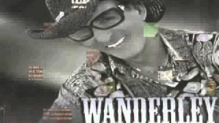 Wanderley da Sanfona Cuidado Amigo
