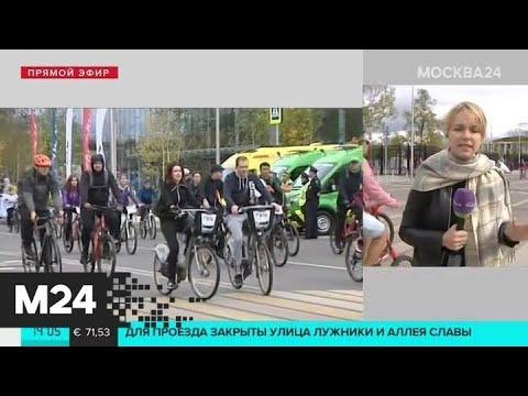 """Участники осеннего велофестиваля возвращаются в """"Лужники"""" - Москва 24"""
