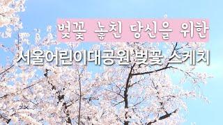 서울어린이대공원 벚꽃 스케치썸네일