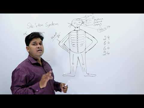 Human Skeleton System ( मानव कंकाल तंत्र ) || JUNE - 2018 || SSC CGL - 2018 Tier - 1