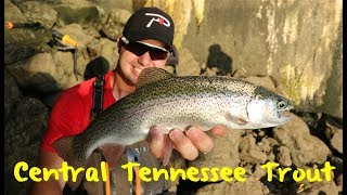Central Tennesse Trout Fishing