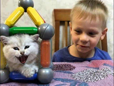 SMART MAX HOUSE FOR CATS ДОМ ДЛЯ КОШКИ ИЗ КОНСТРУКТОРА СМАРТ МАКС