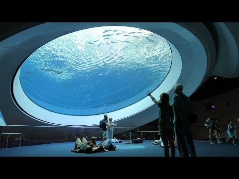 Florida Travel: Visit The Frost Museum Of Science In Miami
