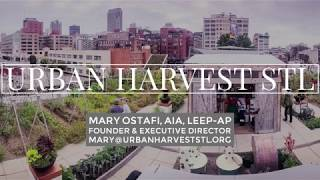 Urban Harvest STL Urban Farm - Mary Ostafi