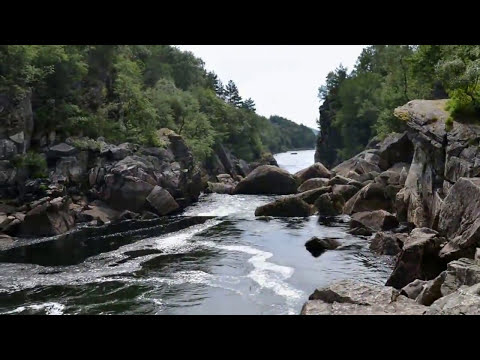 Salmon Jumping And A Fish Ladder For Salmons In Norway
