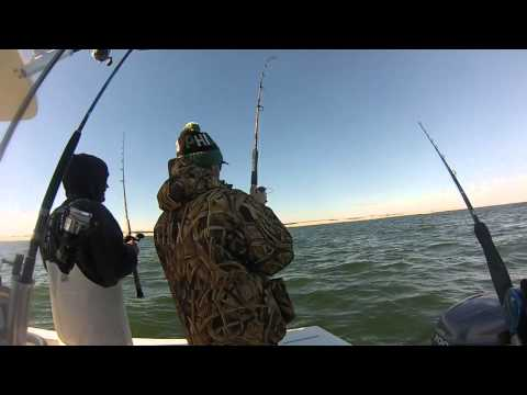 Striper fishing jersey shore 11 15 14 youtube for Nj shore fishing report