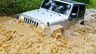 Jeep Wrangler, no uso!