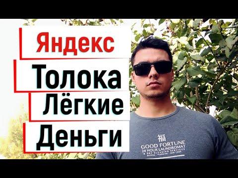 Как заработать деньги в Яндекс Толока 2020 году 50$ в день!?