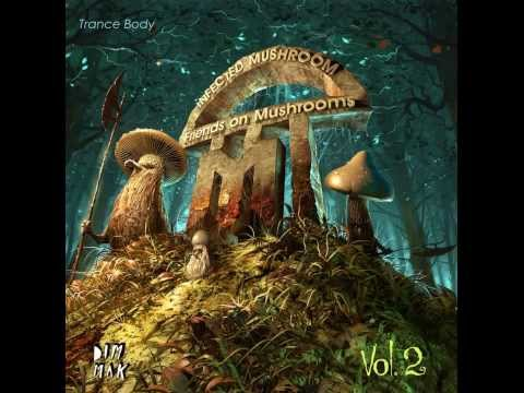 Astrix & Infected Mushroom - Trance Party