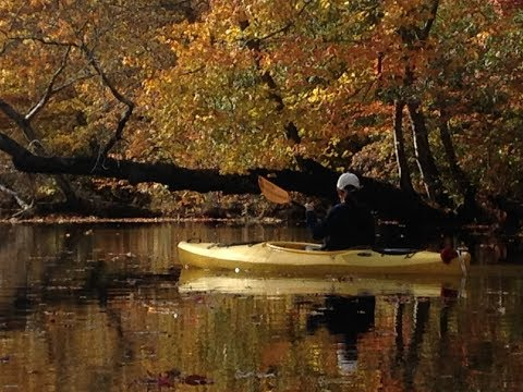 Anna Kayaking on Rancocas Creek