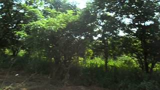 Project video of Bhumi Raj Hermitage