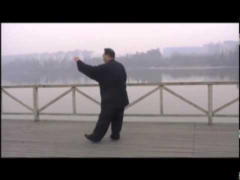 Secuencia de Tai Chi de la familia Yang 115 Liu Xin Lu