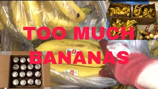 DUMPSTER DIVING/ TOO MANY BANANAS \u0026 MORE