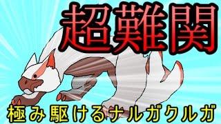 【MHFZ】モンハン史上最強モンスター!極み駆けるナルガクルガ!【第八話】 thumbnail