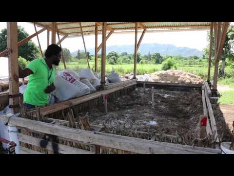 Sustainable organic integrated livelihoods in Haiti UNCCD (en)