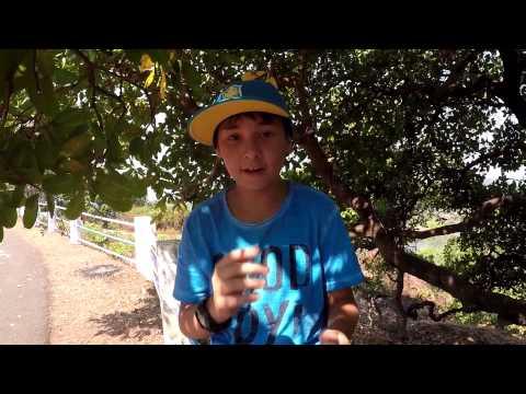 Яблоки: польза и вред. Лечение яблоками ::