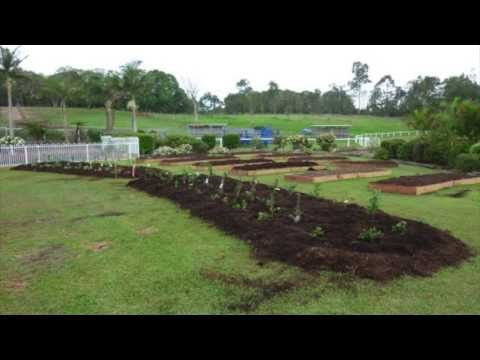 Permaculture Transformation In 90 Days