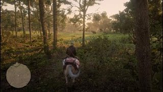 Legendary Panther Location In Red Dead Redemption 2 / RDR2 Close Call