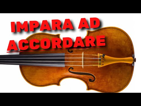 Pillole di ukulele - ACCORDATORE A CLIP - come si usa? from YouTube · Duration:  13 minutes 37 seconds