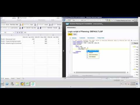 *REC , *XDIM_MEMBERSET and *FOR Commands: SAP BPC Logic Script