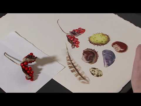 Watercolour Painting Fortissimo Berries - Preview ⎮Billy Showell ⎮Watercolour Beautiful