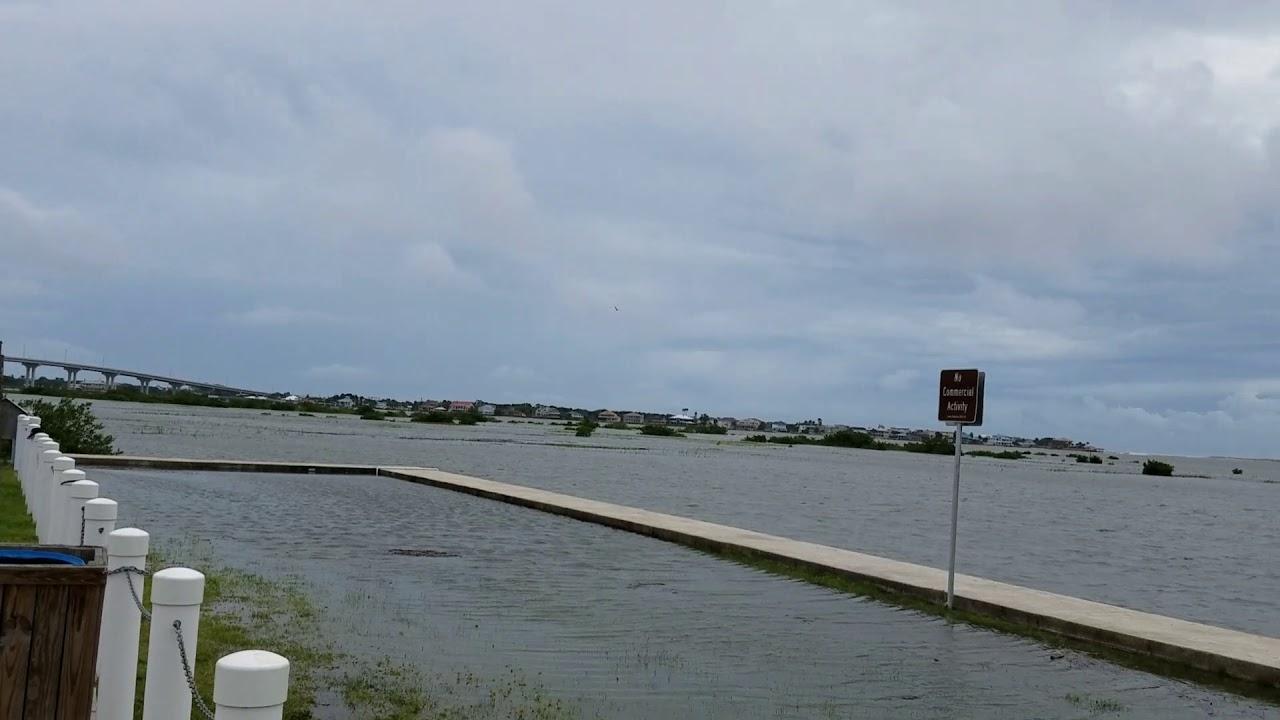 Vilano Beach St Augustine Dogs