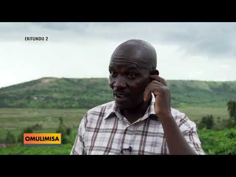 OMULIMISA : Ennima y'akatunda n'okafunamu.  BBBB