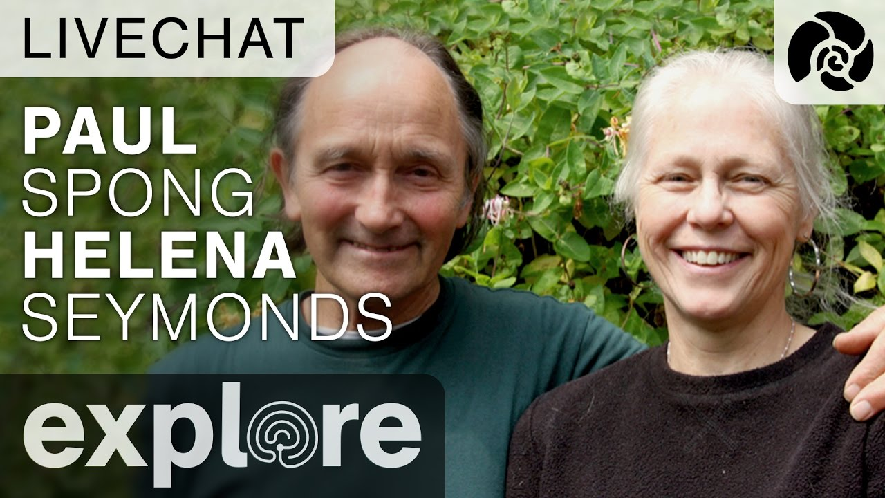 Paul Spong and Helena Seymonds of OrcaLab - Live Chat 10/12/16