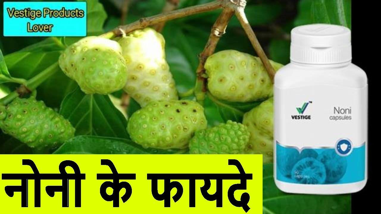 noni ke fayde in hindi / vestige noni capsule benefits in