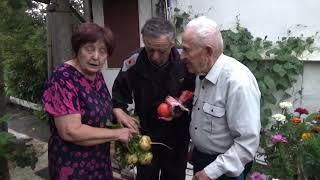 Как приготовить салат из репы. Рецепт от Ольги Ивановны.