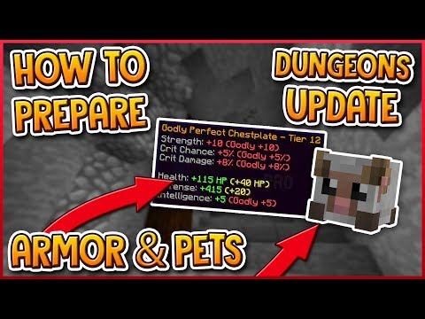 HYPIXEL SKYBLOCK | How To Prepare For DUNGEONS UPDATE! (Armor, Pets)