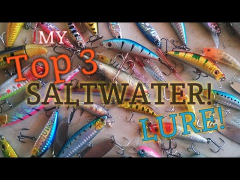 Best Beginner Lures For Saltwater Fishing | (TOP 3 Lure Guide For Shore Saltwater Fishing)