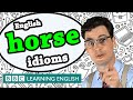 Horse idioms - Learn English idioms with The Teacher