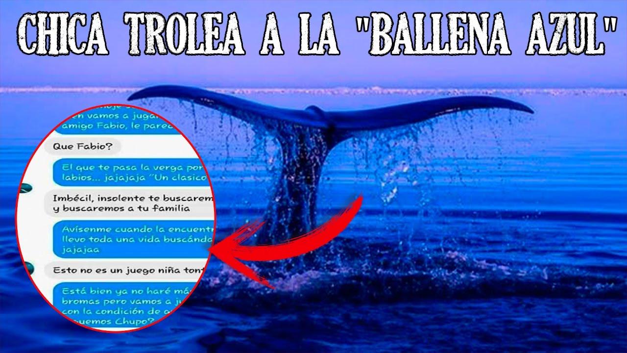 ballena azul - photo #25