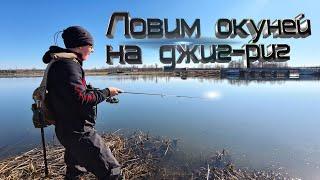 Ловим окуней на спиннинг Весенний спиннинг 2020