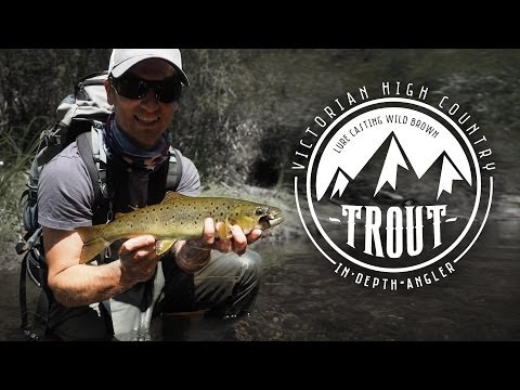 High Country Trout - Lure Fishing For Brown Trout