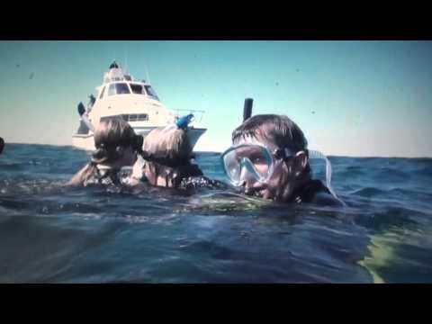 Swimming with whale shark Ningaloo Reef  Western Australia 2014 Video
