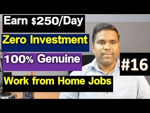 Copy Paste work from home jobs | H1B Visa Life in USA | Telugu Vlogs from USA
