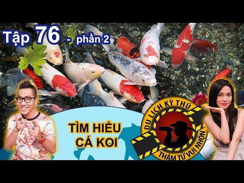 Hoang Rapper is surprised with the Japanese Koi fishes  | NTTVN #76 | Part 2 | 210618 🐟