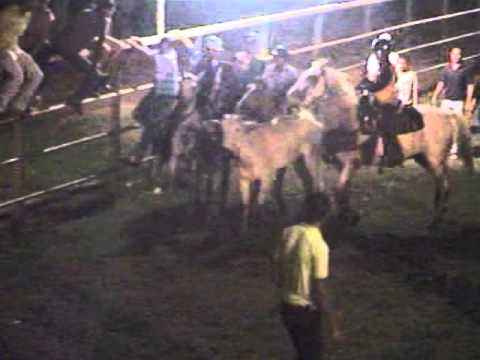 toros coleados la guama del pao turno 1 salida 2 ( COLEO DESTETE ) by  gustavo gonzalez