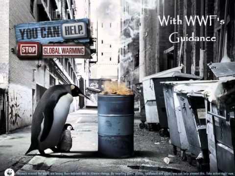 WWF organization