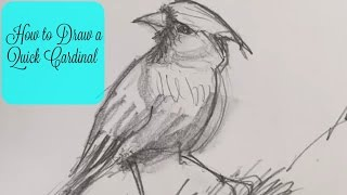 How to draw a quick cardinal