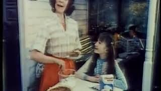 Dream Whip commercial 1976
