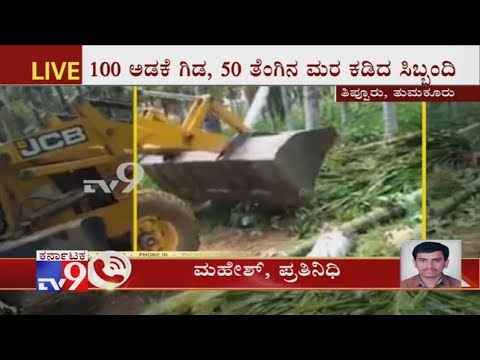 Tumkur: 100 Areca Trees, 50 Coconut Trees Chopped  For Cultivating On Illegal Land