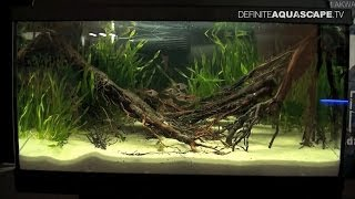 Aquascaping - Aquarium Ideas From Zoobotanica 2013, Pt.5
