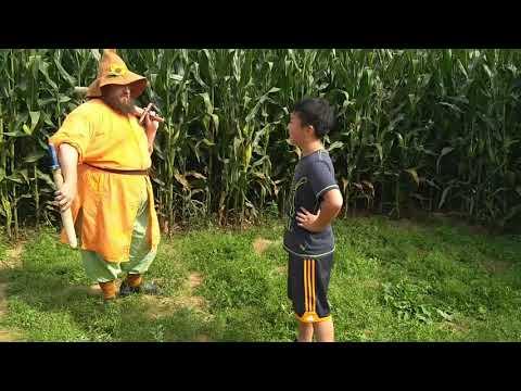 Sword Fight Maze Harbes Family Farm