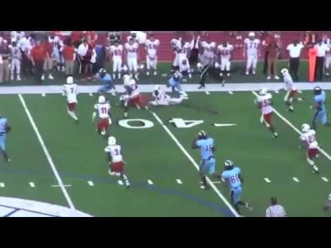 Darrian Hammonds RB [Jamal Lewis Type] (Seguin) Arlington, TX 2016